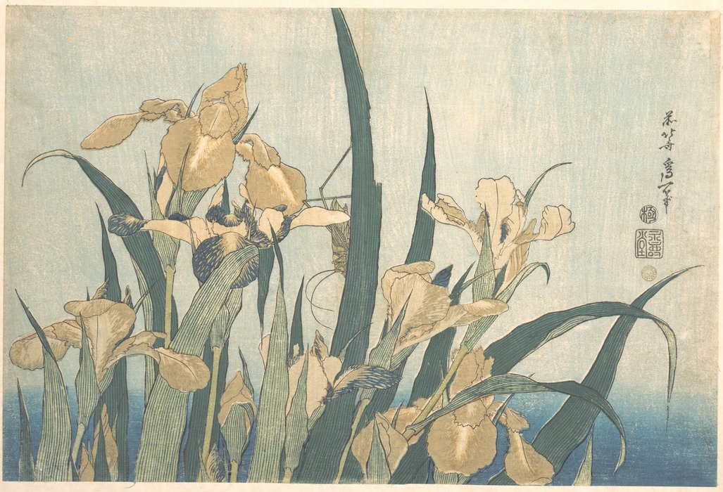 Achat Reproductions D'art | criquet et  Un IRIS  de Katsushika Hokusai | Most-Famous-Paintings.com